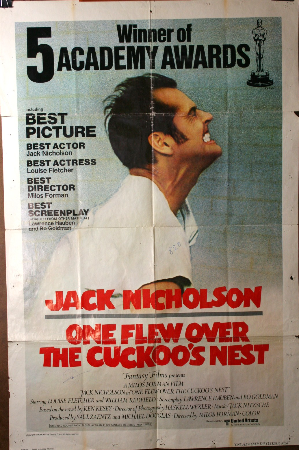 one flew over the cuckoos nest Free summary and analysis of the events in ken kesey's one flew over the cuckoo's nest that won't make you snore we promise.