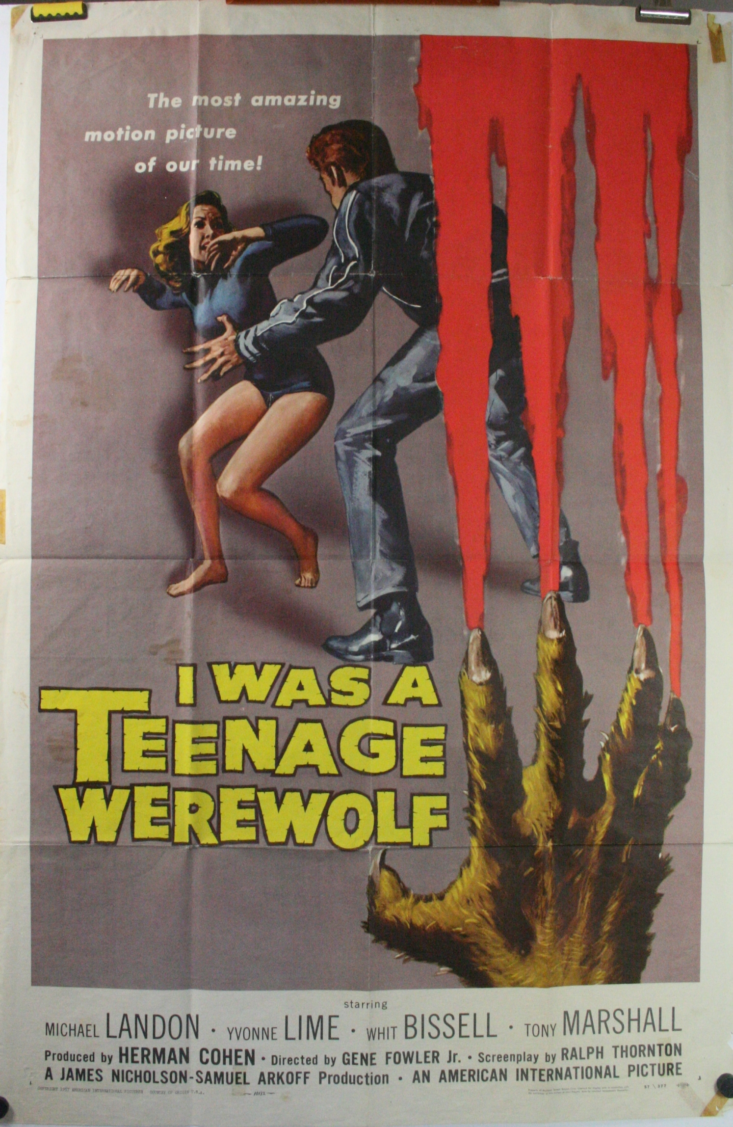 I WAS A TEENAGE WEREWOLF-C75