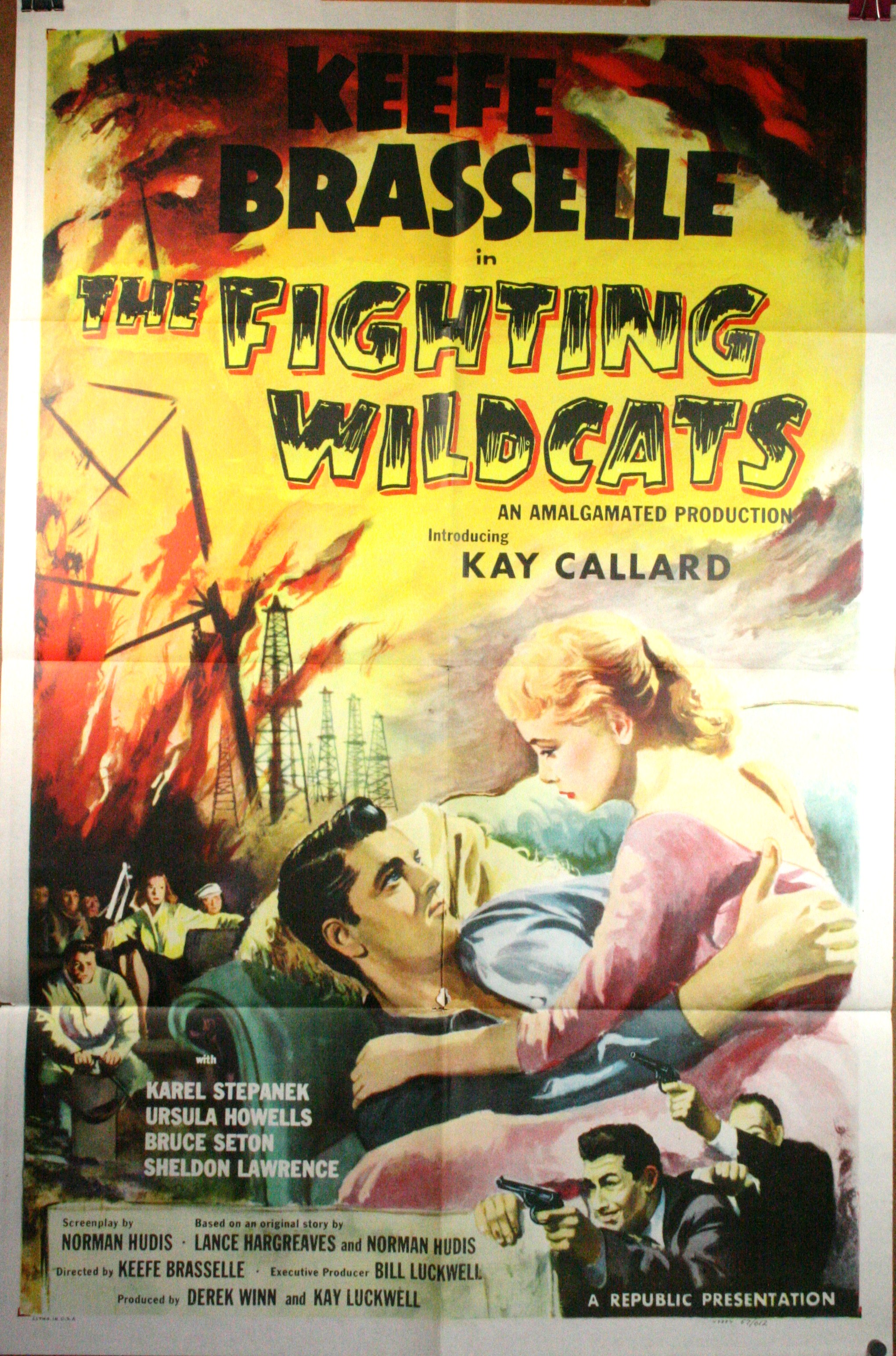fighting-wildcats